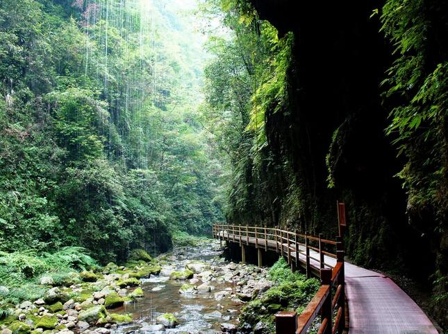 "(v2线五钻)张家界大峡谷玻璃桥·张家界国家森林公园·探秘""阿凡达"""